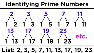 Divisibility, Prime Numbers, and Prime Factorization