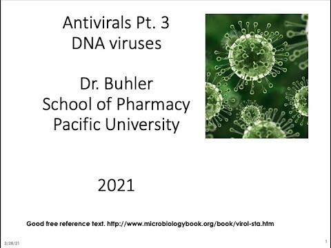 Papillomavirus vaccine against