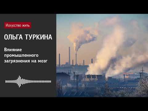 Ольга Туркина: Влияние промышленного загрязнения на мозг