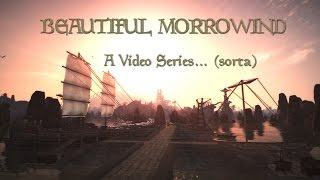 Beatiful Morrowind MGE XE ENBPalette and Home Made Palette