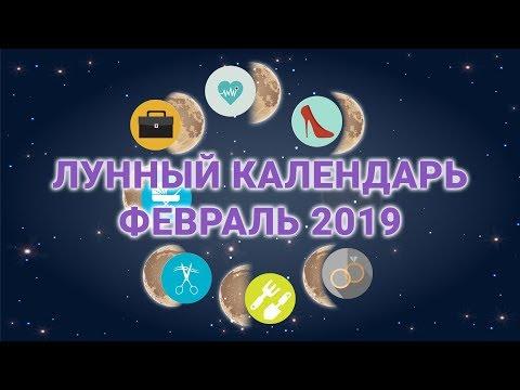 Лунный календарь бизнеса, стрижек, здоровья на февраль 2019