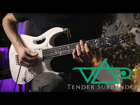 Steve Vai - Tender Surrender - Guitar Cover