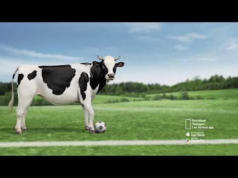 Taanayel Les Fermes - World Cup 2018