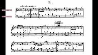 "Mozart Sonata K. 333 B-dur 3rd movement ""Rondo"" on 2 Casios (vibraphone+celesta in R.H.)"