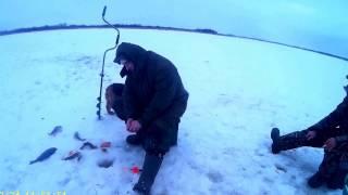 Рыбалка зимой в дельте северной двины