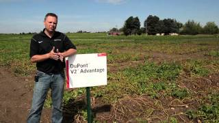 DuPont's V2 Advantage
