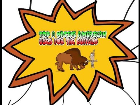 TOP 10 NATIVE AMERICAN USES FOR THE BUFFALO