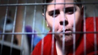 Video Film Krieg die Kurve - ohne Drogen