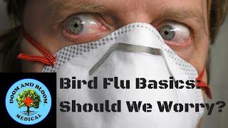 Bird Flu Basics: Should We Worry?