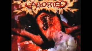 Aborted-Highway 1-35