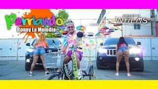 Ronny La Melodia   Perriando 🐶 (Video Oficial)