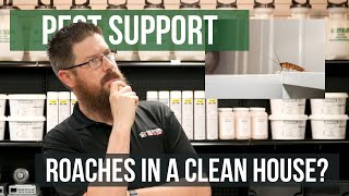 What Causes Roaches in a Clean House? | Pest Support