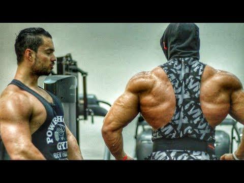 Le muscle comme en pierre