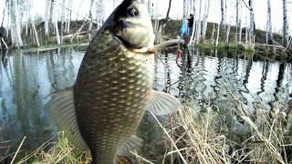 Как рыбалка на тарманских озерах в тюмени