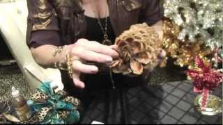 How To DIY Pinecone Christmas Ornaments By Donna Moss Donna Decorates Dallas