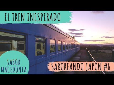 Cap. 5: El tren inesperado