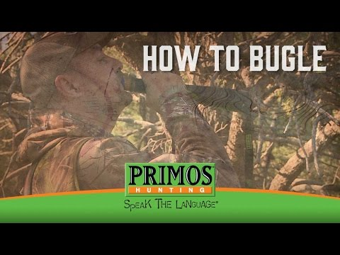 How to Make an Elk Bugle video thumbnail