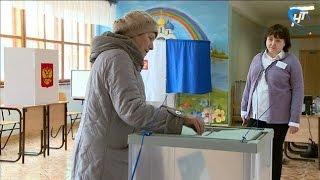 Подведены предварительные итоги дополнительных выборов депутатов Думы Великого Новгорода