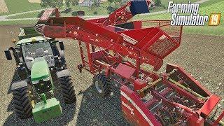Buraki własnym kombajnem.  #56 Felsbrunn ☆ Farming Simulator 19 ☆ ㋡ Anton