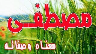 اغاني حصرية معنى اسم مصطفى و صفات حامل هذا الإسم !! تحميل MP3