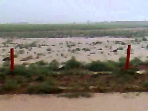3 4 2009  امطار عشيران