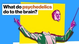 How psychedelics work: Fire the conductor, let the orchestra play | Michael Pollan