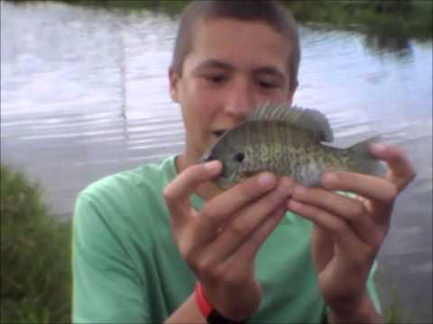 RCF: Pond Fishing Ep.12