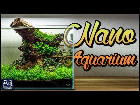 Ein Nano Aquarium einrichten   AquaOwner