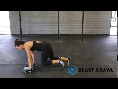 Bear Crawl Hands On Disc