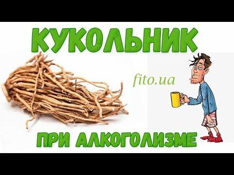 Трава кукольник от алкоголизма, приготовление, цена | Травяная аптека - Фито