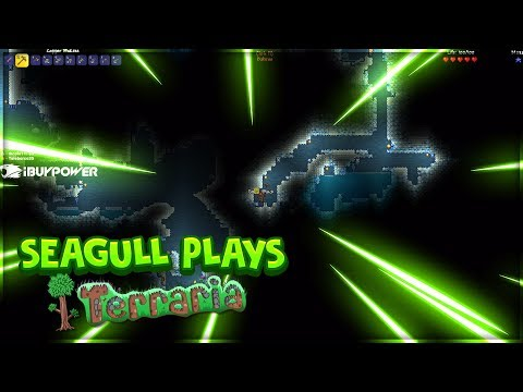 Seagull Plays Terraria For The First Time