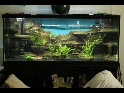Aquarium selber bauen. Aquarium deko selber bauen.