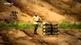 Vidéo- La vie des paysans au Moyen Âge
