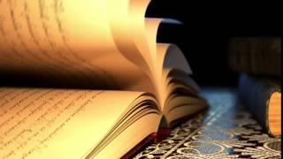Футаж Книга с перелистывающимися  страницами