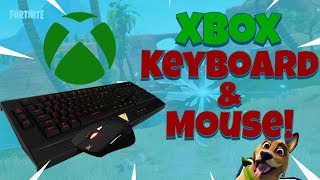 Using Keyboard And Mouse On Xbox One Free Online Videos Best