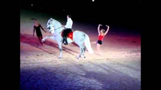 "2010 WEG Opening Ceremonies Mario A. Contreras "" Andalusian Stallion  Lexington ballet"