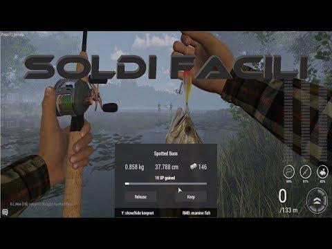 Scaricare un trofeo di gioco che pesca sul computer attraverso un torrente