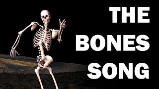SKELETON BONES SONG - LEARN IN 3 MINUTES!!!