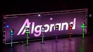 DRL X Algorand