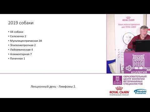 Пака М. В. - Наши результаты лечения лимфом