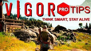 How to Vigor - Vigor Pro Tips - Vigor Advanced Tips