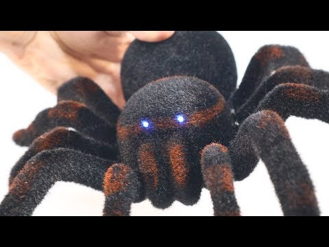 Remote Control Toy SPIDER | RC Spider UNBOXING and PRANK!!