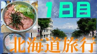 北海道旅行1日目、まずは函館を歩く!市場、八幡坂、五稜郭タワー、そして謎の鳥。もちアニ