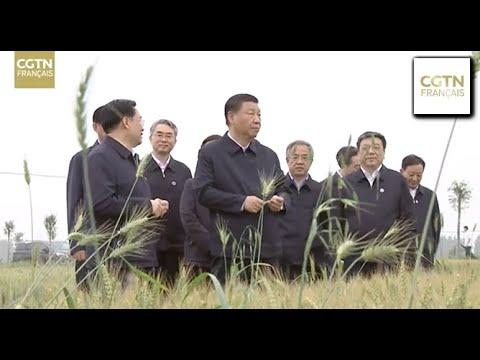Xi Jinping inspecte les travaux d'adduction d'eau du Sud vers le Nord dans la ville de Nanyang Xi Jinping inspecte les travaux d'adduction d'eau du Sud vers le Nord dans la ville de Nanyang