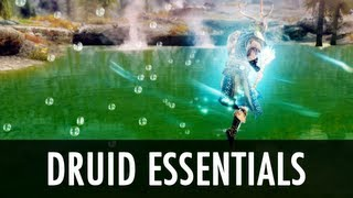 Skyrim Mod: Druid Essentials