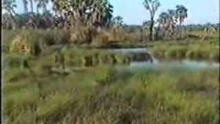 Awash Park - Ethiopia