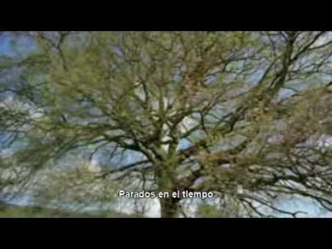 Small (subtitulada) - Queen + Paul Rodgers