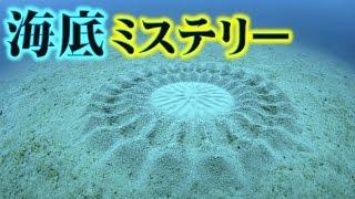 沖縄の海底で発見された新種生物のミステリーサークルが凄い謎・Part12