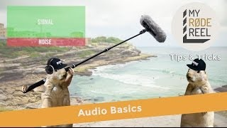 My RØDE Reel Tips & Tricks - Audio Basics