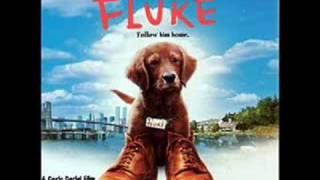 Fluke OST   3. Born Again